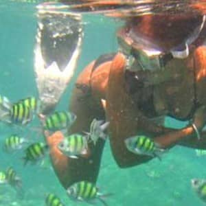 Getting to know the locals... Andaman Sea