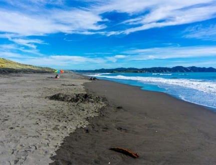 Kawhia New Zealand